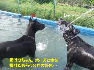 028_convert_20110808232525.jpg