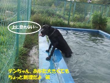 029_convert_20110808232612.jpg