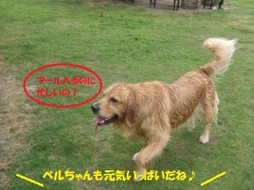 031_convert_20110705233700.jpg