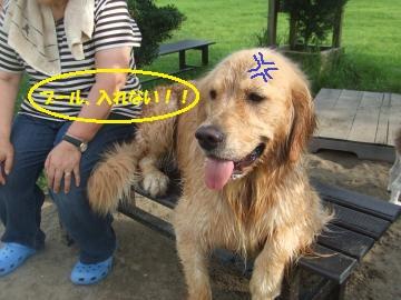 033_convert_20110808232733.jpg