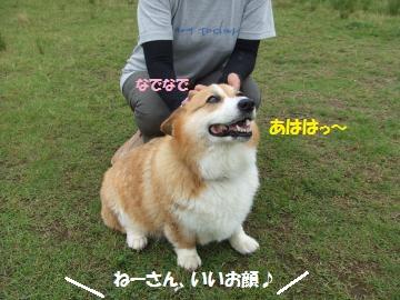 034_convert_20110710031059.jpg