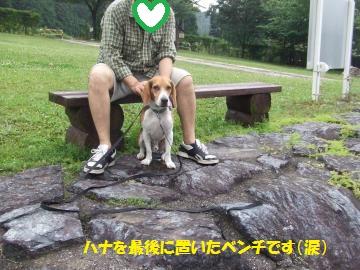 036_convert_20110620031105.jpg
