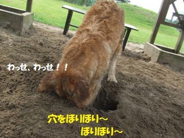 037_convert_20110727001201.jpg