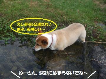 042_convert_20110816033838.jpg