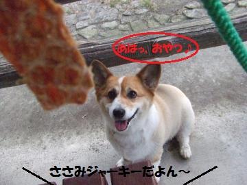 044_convert_20110816033936.jpg