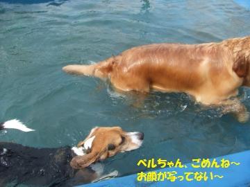 052_convert_20110727004146.jpg