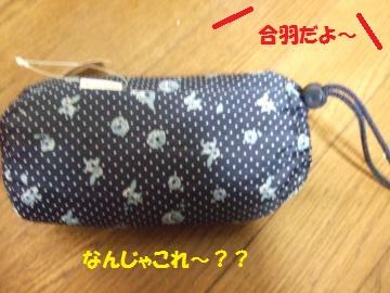 054_convert_20110509230257.jpg
