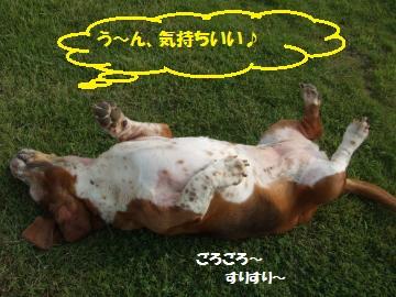 061_convert_20110727001905.jpg