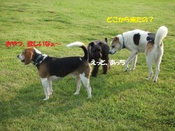 063_convert_20110727010341.jpg