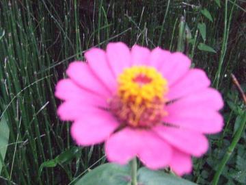 071_convert_20110812023640.jpg