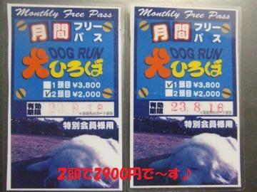 084_convert_20110718033151.jpg