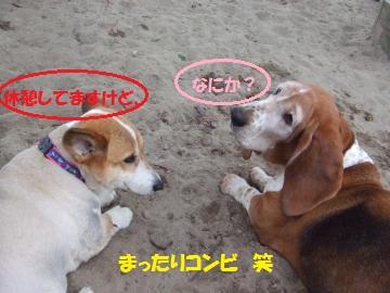 115_convert_20110721221017.jpg
