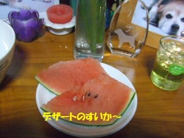 133_convert_20110719215206.jpg