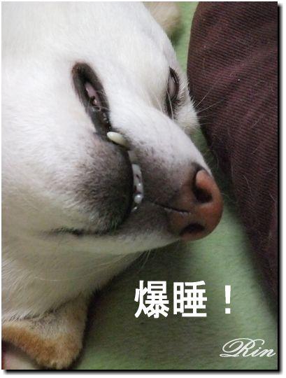 ・・・恐い寝顔(笑)