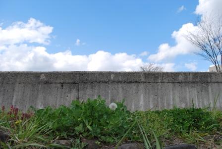 2011.4.29ガスオーブン初火入れ 005