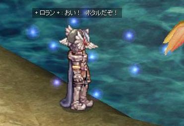 ホタル( д) ゚ゝ゚ エェッ!?