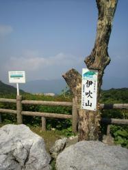 20110810息吹山