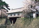 hi_shiro_p04.jpg