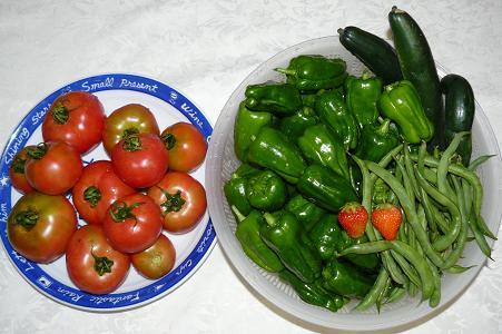 トマト・ピーマン・キュウリ・インゲン・イチゴ 収穫
