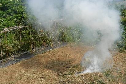 草を燃やすと蚊が寄って来ないよ (^^)