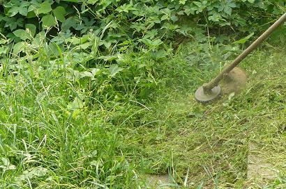 ナイロンカッターで草刈