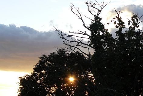 西の空に夕日
