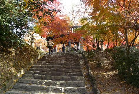 秋月の黒門