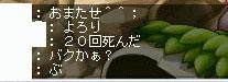 Maple0207-2.jpg