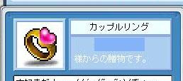 Maple0412-2.jpg