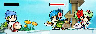 Maple0602-1.jpg
