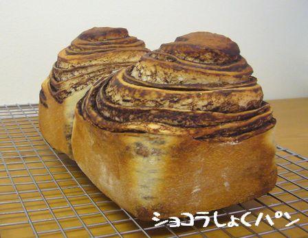 ヨーグルト酵母ショコラ食パン