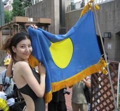 パラオ国旗と