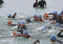 swim29.jpg