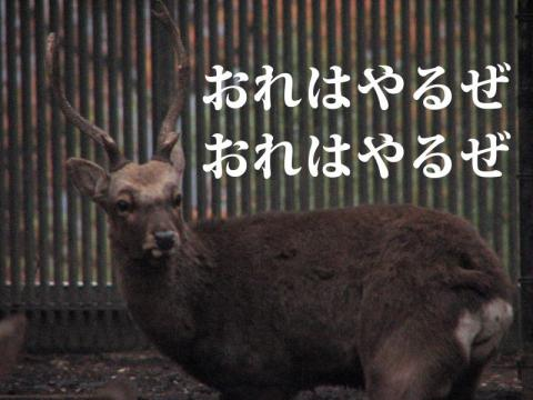 bIMG_8592.jpg
