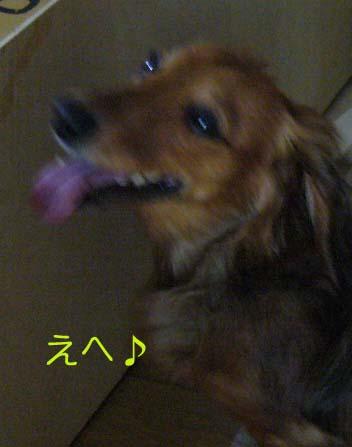 20070705204224.jpg