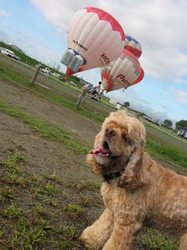 ひで気球2