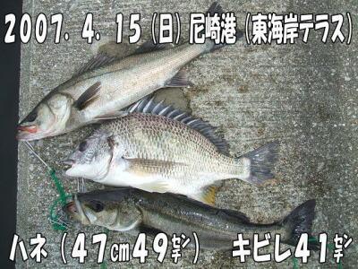 尼崎港(東海岸テラス)