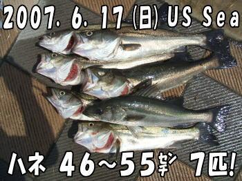 釣果♪46~55㌢7匹