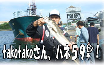 takotakoさん、ハネ59センチ♪