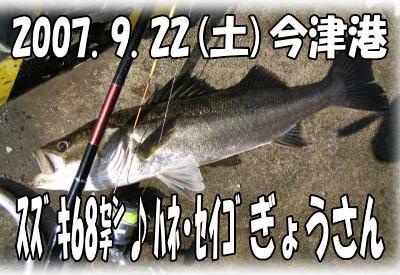 今日の釣果♪