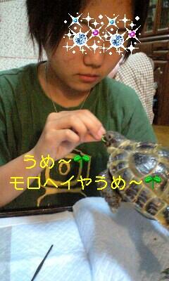 110808_1642~0002-0001
