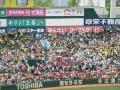 gaiya01.jpg
