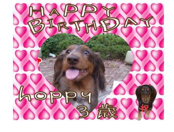 birthday-hoppy.jpg