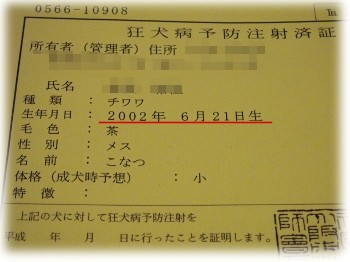 P4030006.jpg