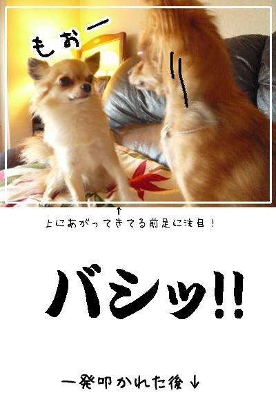 blog0926-1.jpg