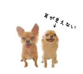 blog0930-1.jpg