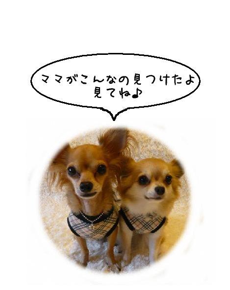 blog1018-1.jpg