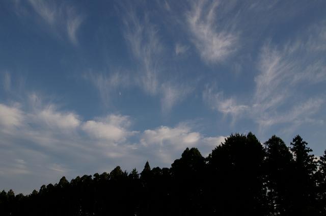 森と雲と月と
