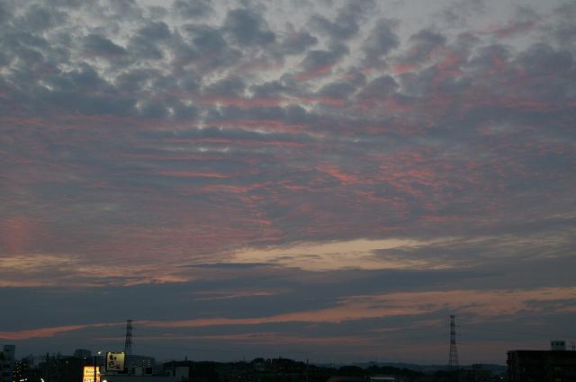 ピンクに染まる空