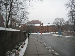 NIHも雪景色